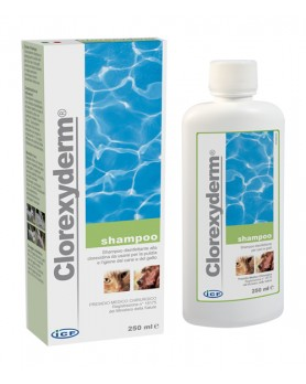 CLOREXYDERM SH 250ML