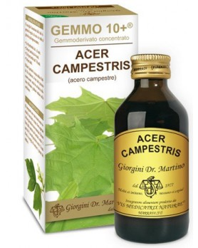 ACERO CAMP 100ML ANALCO GEM10+